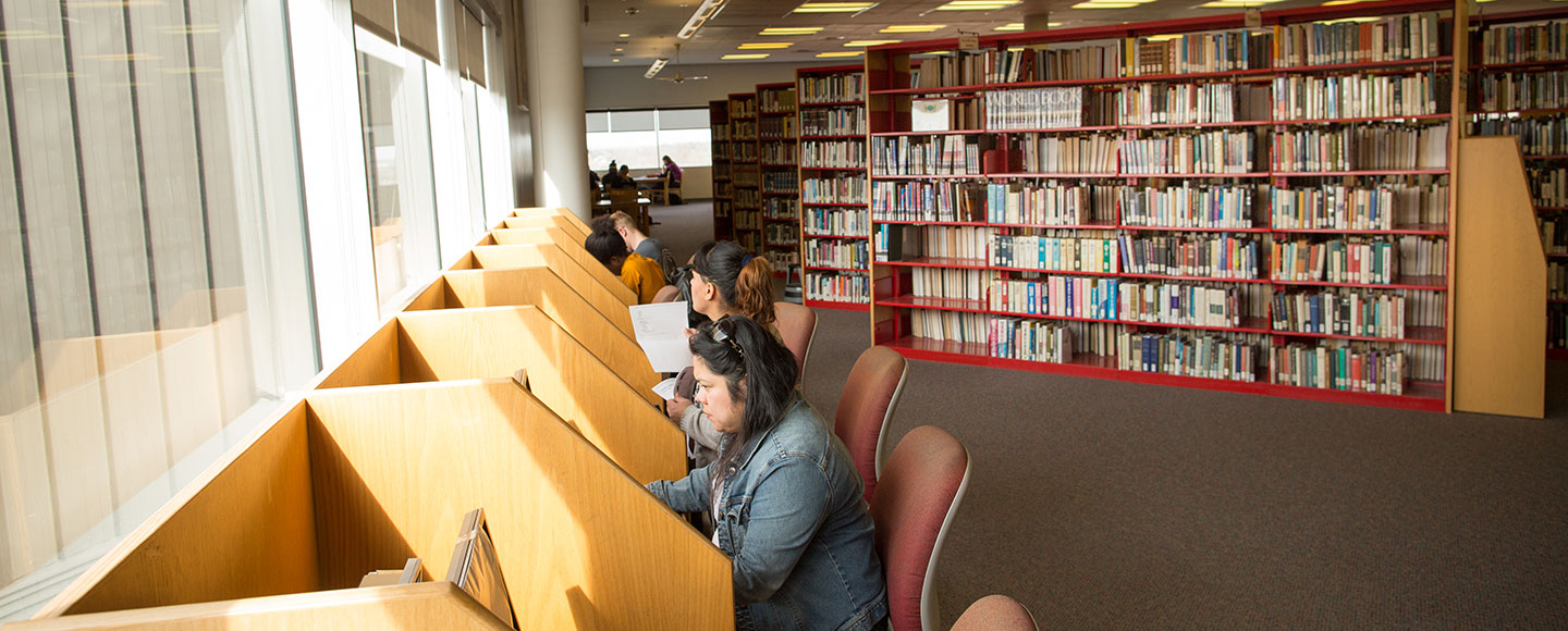 students researching in library